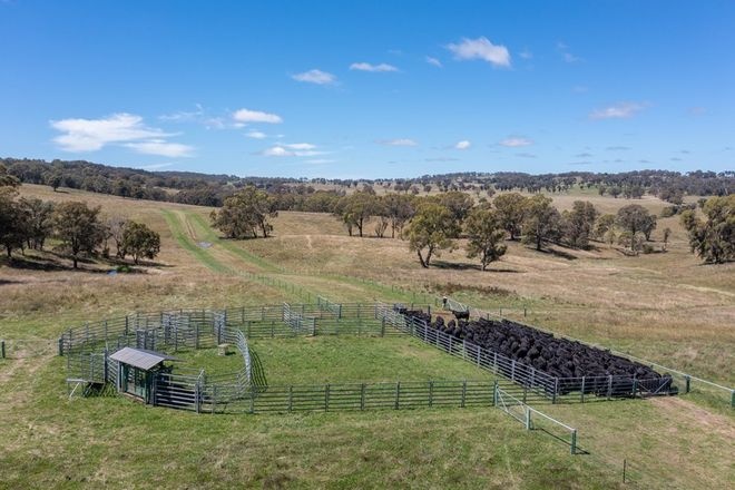 Picture of 479 Whans Road, LLANGOTHLIN NSW 2365