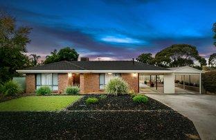 Picture of 11 Nilpena Court, Craigmore SA 5114