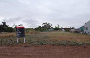 Picture of 48 Urban Street, Wagin WA 6315