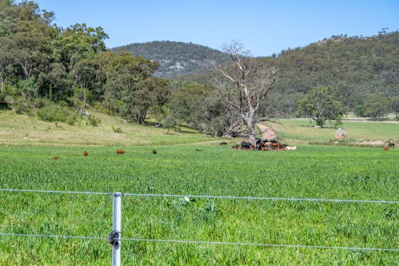 Yarrawa NSW 2328, Image 1