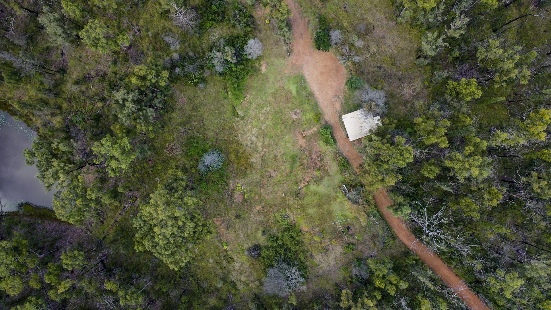 484 Glens Creek Road, Nymboida NSW 2460, Image 0