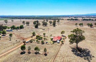 Picture of 'Camelot' 49 Camelot Lane, Walla Walla NSW 2659