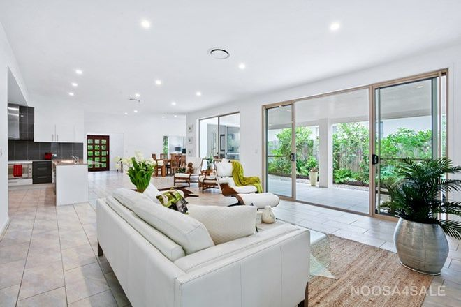 Picture of 23 Jacksonia Place, NOOSAVILLE QLD 4566