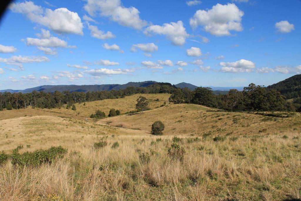 525 Homeleigh Road - Homeleigh, Kyogle NSW 2474, Image 2
