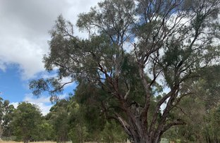 Picture of Lot 25 Glenellie Road, Margaret River WA 6285