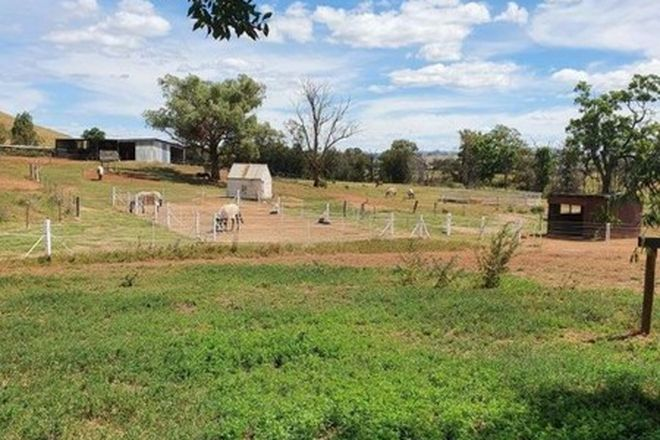 Picture of 198 Jump Up Rd, BARRABA NSW 2347