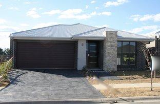 Lot 5521 Kale Road, Spring Farm NSW 2570