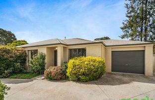 Picture of 3/25 Tallowwood Street, Thurgoona NSW 2640