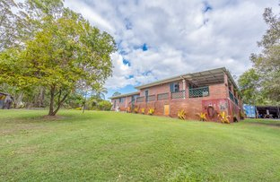 Picture of 31 Tanderra Drive, South Kolan QLD 4670