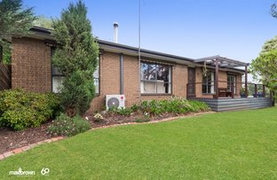 Picture of 11 Howard Street, Seville VIC 3139