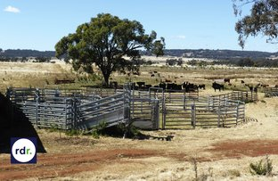 8263 Gwydir Highway, Inverell NSW 2360