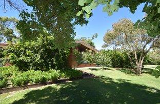 Picture of 32b Picking Street, Goondiwindi QLD 4390