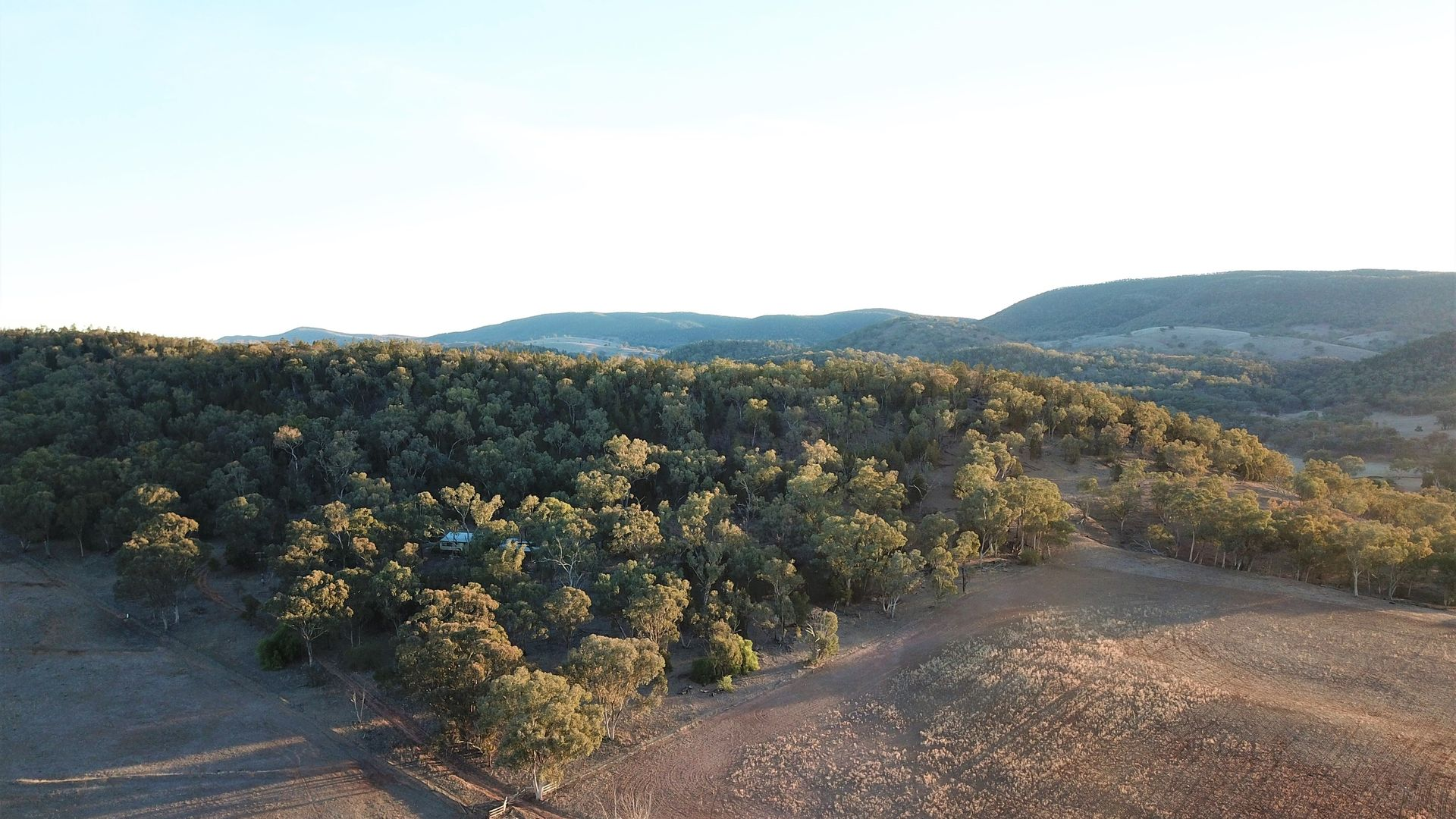 'Fox Hill' 573 Blathery Creek Road, Neurea NSW 2820, Image 1