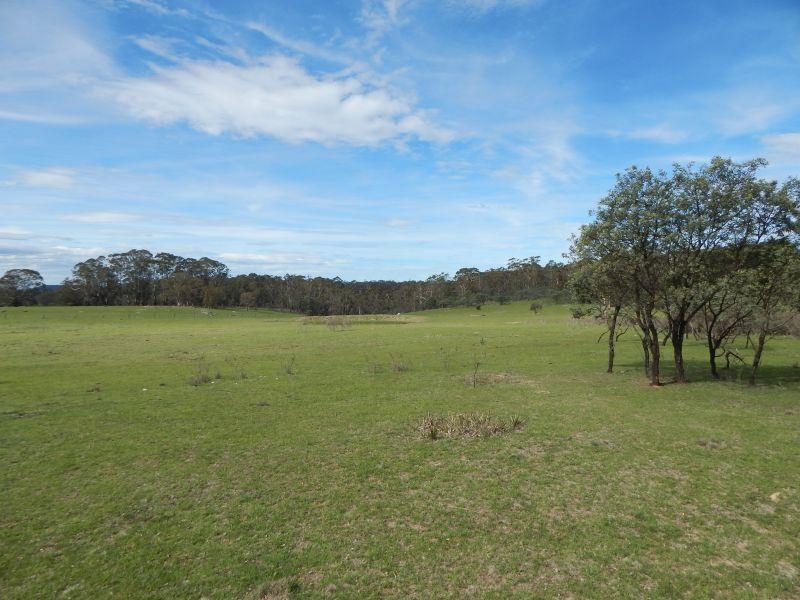 Lots 119-125/127 New Line Road, Glen Allen NSW 2631, Image 0