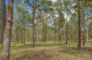 Picture of Lot 307 Spiegel Rd, Glenwood QLD 4570