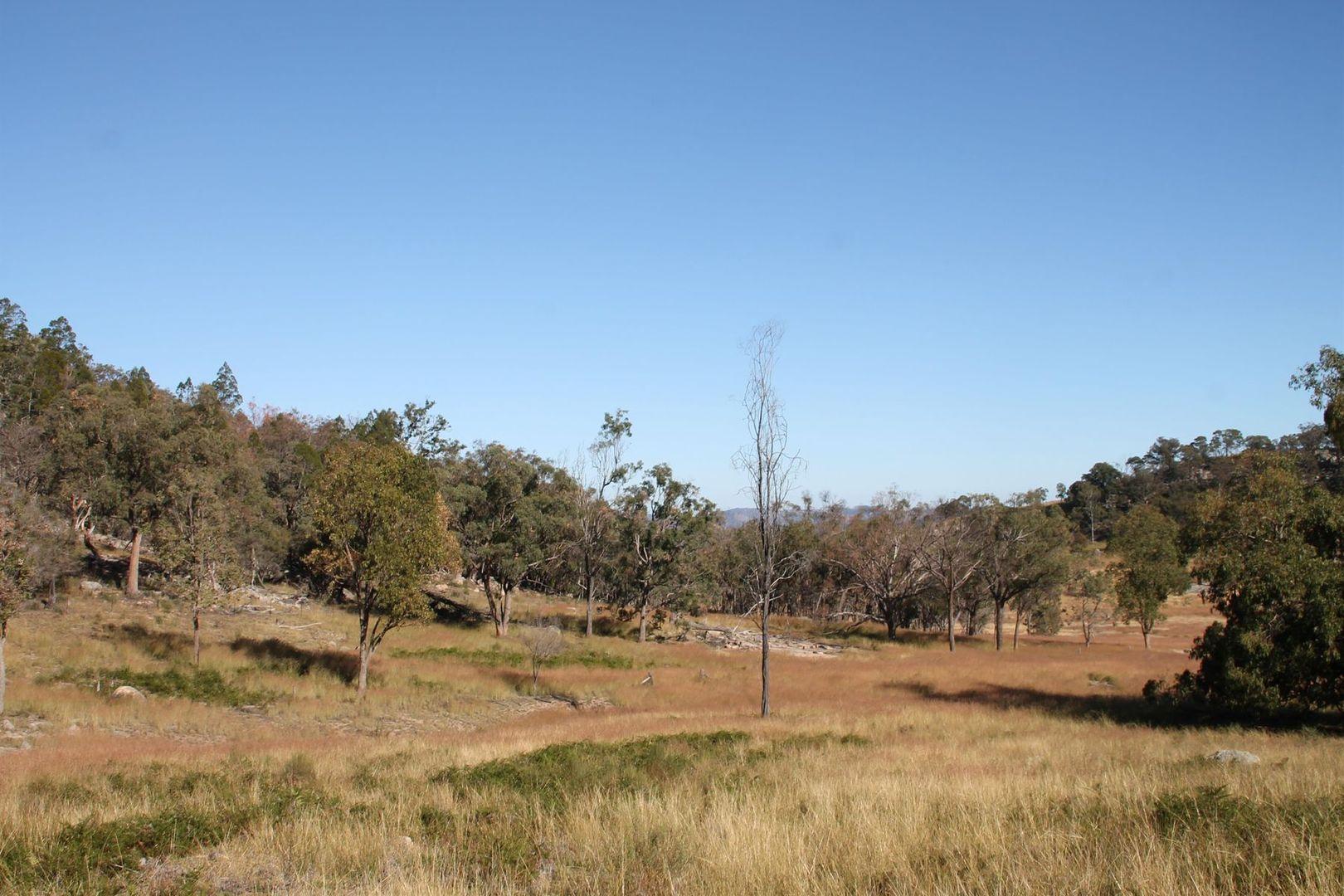 Lot 53 Gunyah Road, Tenterfield NSW 2372, Image 1