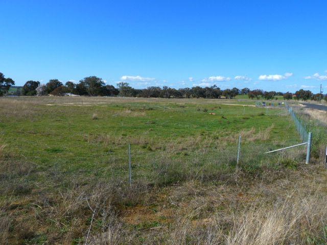 6, 13 Foys Drive, Molong NSW 2866, Image 1