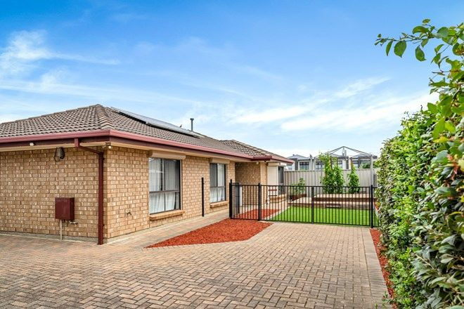 Picture of 3/18 Packard Street, NORTH PLYMPTON SA 5037