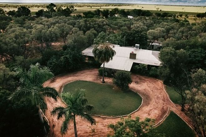 Picture of 41 Sandalwood Drive, BARCALDINE QLD 4725