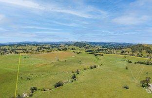 Picture of Lot 30 (DP865027)16 Hanleys Creek Road, Tabbil Creek Via, Dungog NSW 2420