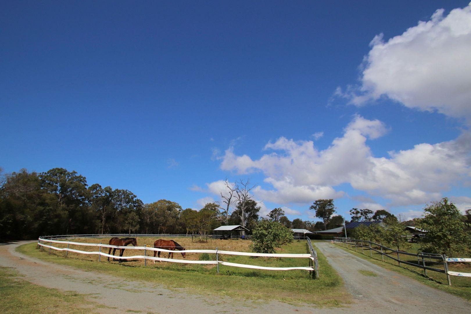 88 Priests Road, Deception Bay QLD 4508, Image 2
