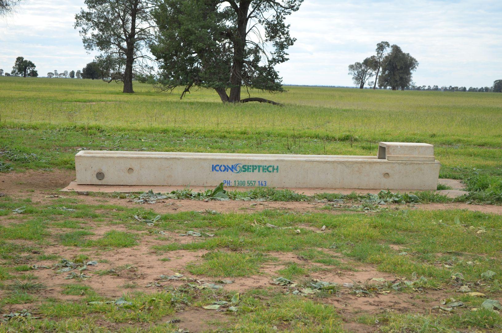 1 Devlins Bridge Road, Narrandera NSW 2700, Image 2