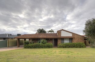 Picture of 42 Horslay Way, Noranda WA 6062