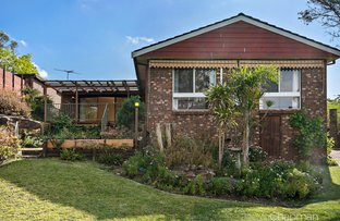 Picture of 24 Lalor Drive, Springwood NSW 2777