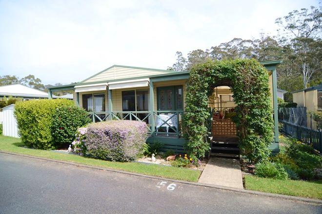 Picture of Villa 56, 3197/Villa 56, 3197 Princes Hwy, MILLINGANDI NSW 2549