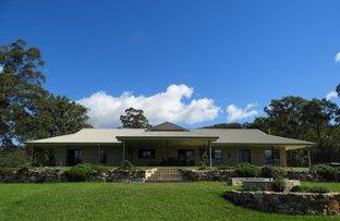 Picture of 842 Comboyne Road, Byabarra NSW 2446
