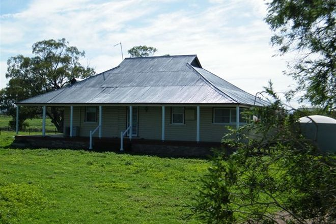 Picture of 2039 Coonabarabran Road, CAROONA NSW 2343