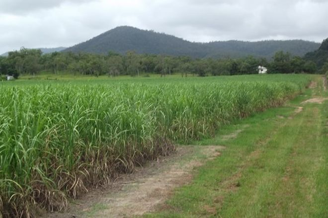 Picture of SUNNYSIDE QLD 4737