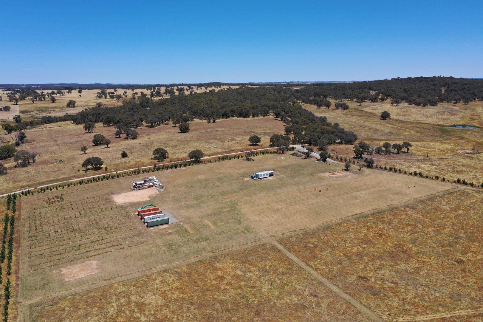 168 Cockatoo Road, Yalbraith NSW 2580, Image 0
