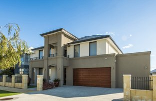 Picture of 25 Hydaspe Vista, North Coogee WA 6163