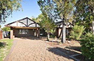 Picture of 12 Osborne Place, Dubbo NSW 2830