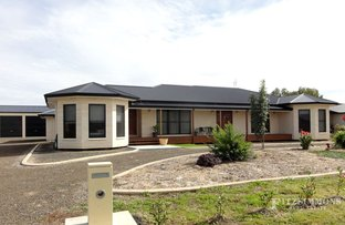 Picture of 17 Carabella Court, Dalby QLD 4405