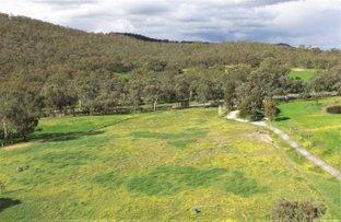 Picture of 26 Thiseldo Lane, Hamilton Valley NSW 2641