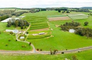 Picture of Orana & Blue Hills, Willigobung Rd, Tumbarumba NSW 2653