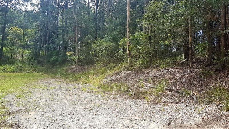 832 Wattley Hill Road, Bungwahl NSW 2423, Image 2