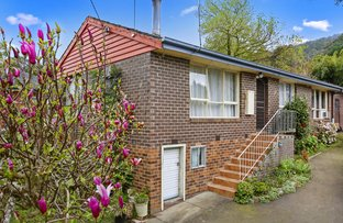 Picture of 11 Christine Street, Millgrove VIC 3799