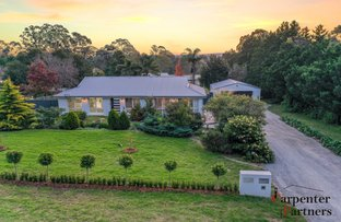 Picture of 33 Darley Street, Thirlmere NSW 2572
