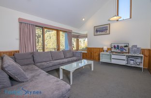 Picture of Thredbo Village NSW 2625