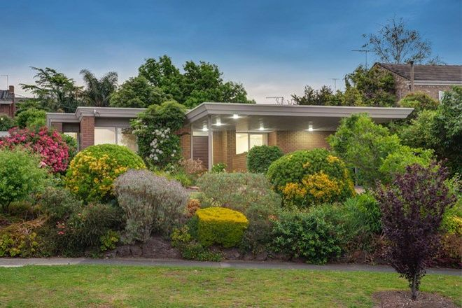 Picture of 28 Larbert Avenue, BALWYN NORTH VIC 3104