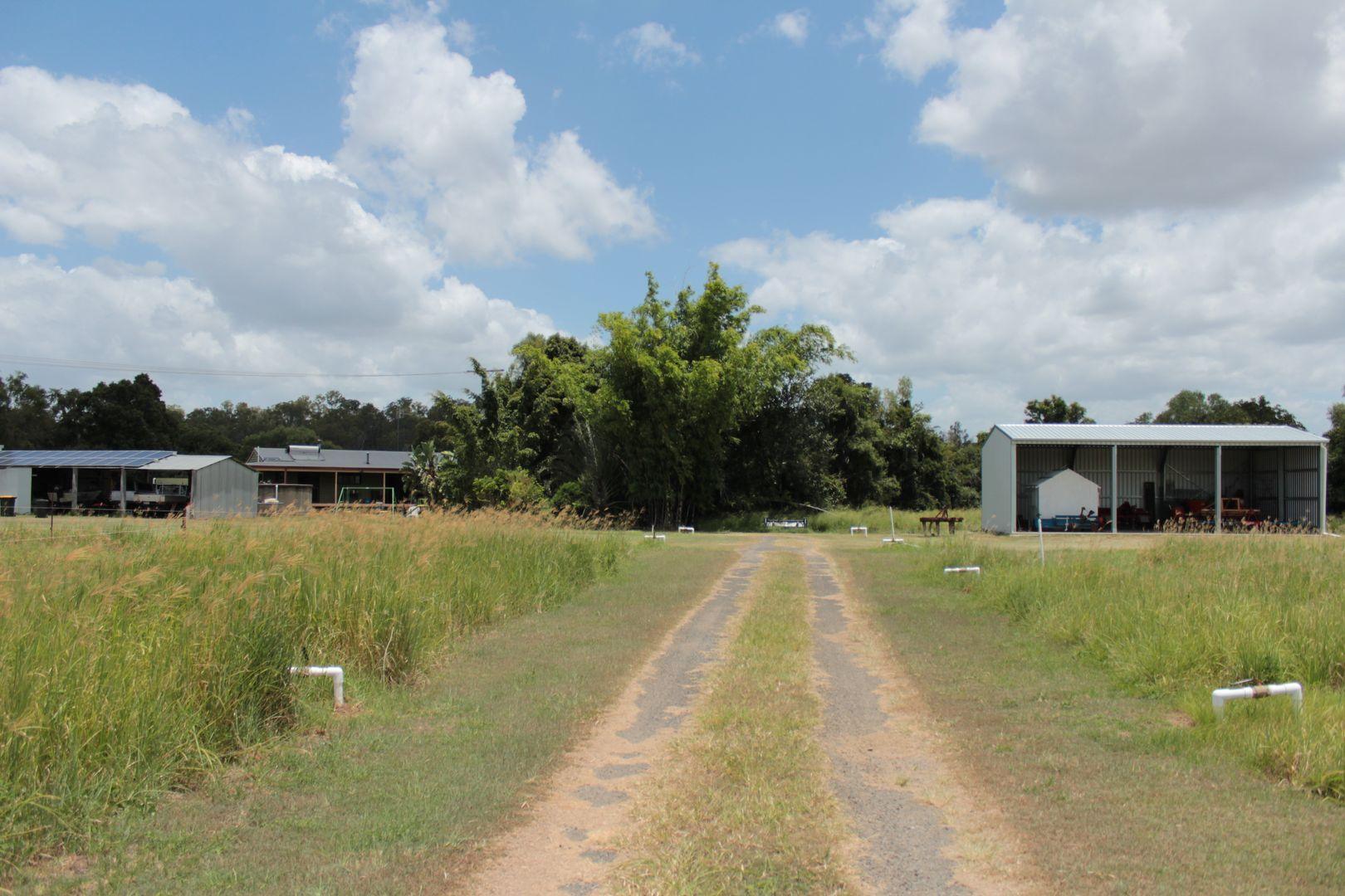 155 Kalbar Rd, South Kolan QLD 4670, Image 2