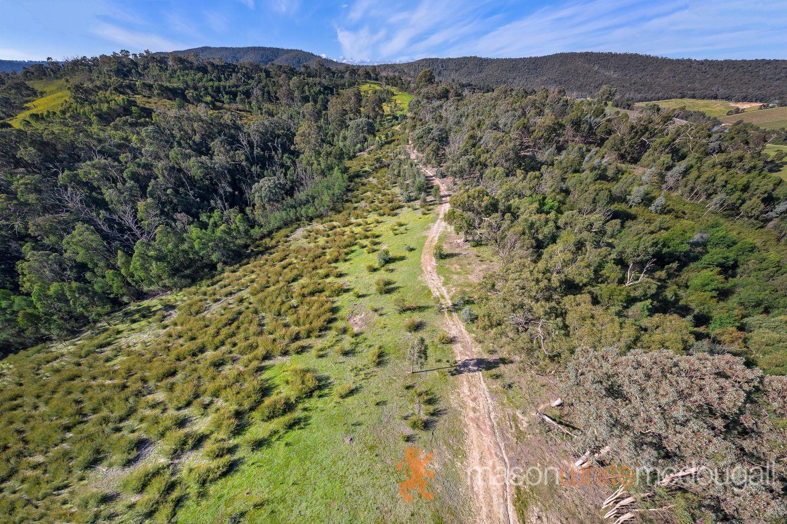 311 Wilddog Creek Road, St Andrews VIC 3761, Image 2