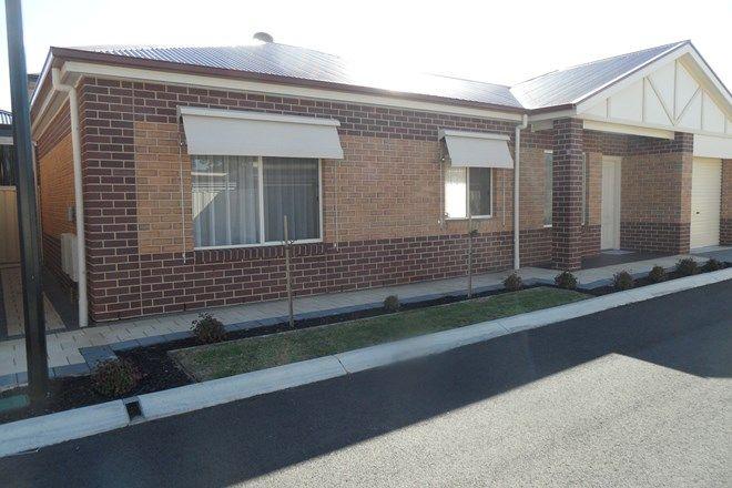 Picture of 19/33 - 45 Lipsett Terrace ( entrance on Hazel St), BROOKLYN PARK SA 5032