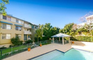 Picture of 20/38 Vincent St, Indooroopilly QLD 4068