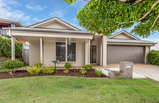 Picture of 12 Dotterel Crescent, North Lakes QLD 4509