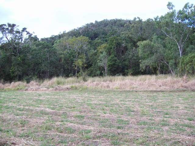 Lot 4 Ball Bay Road, Ball Bay QLD 4741, Image 2