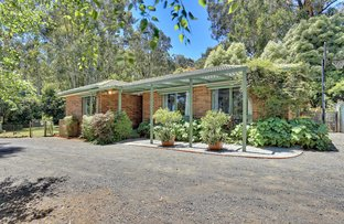 Picture of 11 Wright Road, Avonsleigh VIC 3782